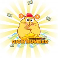 RichNumber