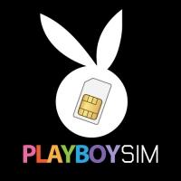 PlayboySim