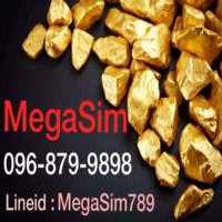 MeGaSim789