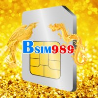 Bsim989
