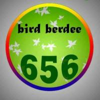 birdberdee656