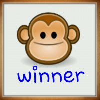 winner456