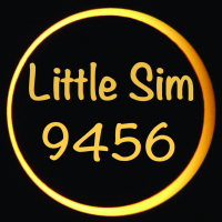 Little Sim